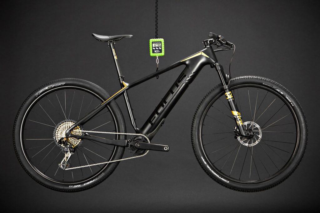 Leichtes E-Bike, Focus, Project Y