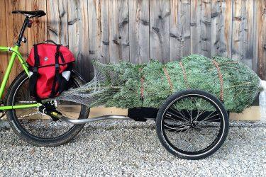 Leasing Weihnachtsbaum.Cargobike So Bringen Sie Ihren Weihnachtsbaum Nach Hause