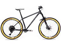 Rennstahl 853 MTB Trail: Mountainbike im Test, Bewertung, Preis