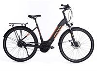 Falter E 9.8: E-Bike im Test – Ausstattung, Antrieb, Bewertung