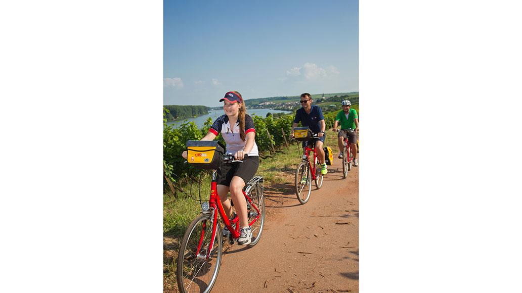 Pfalz, Radfahren, Touristik, Radreise
