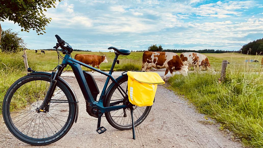 Pathlite:ON 8.0, Canyon, Powerpack, E-Bike, Pedelec