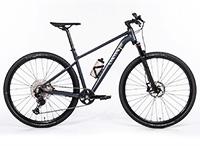 Canyon Pathlite 7 WMN: Crossrad für Damen im Test