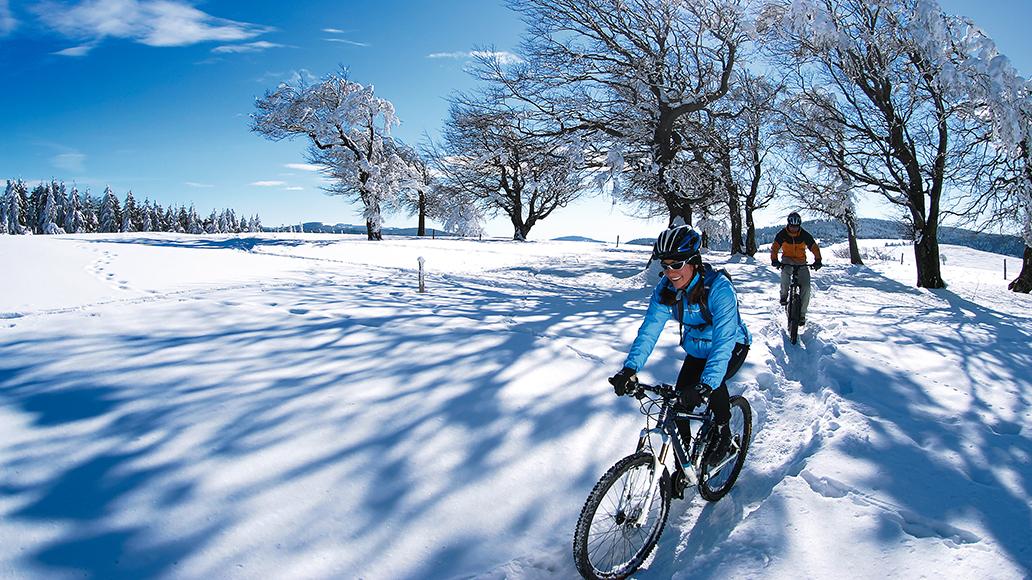 Radfahren, Fahrrad, E-Bike, Corona, Lockdown, Fahrradwerkstätte