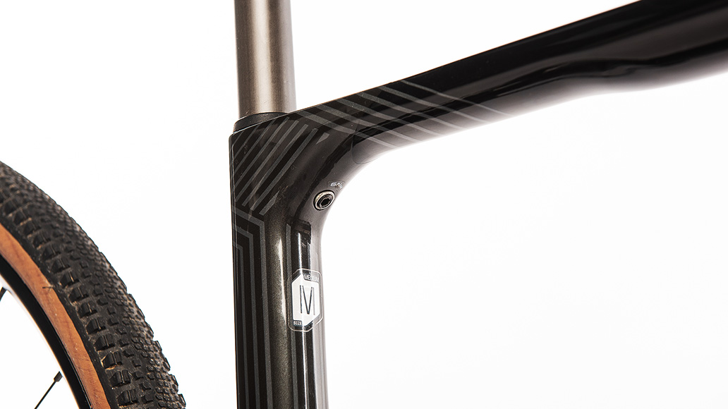 Cannondale Topstone Neo Carbon 2, E-Gravelbike, Test, E-Bike, E-Bike-Test, Kaufberatung