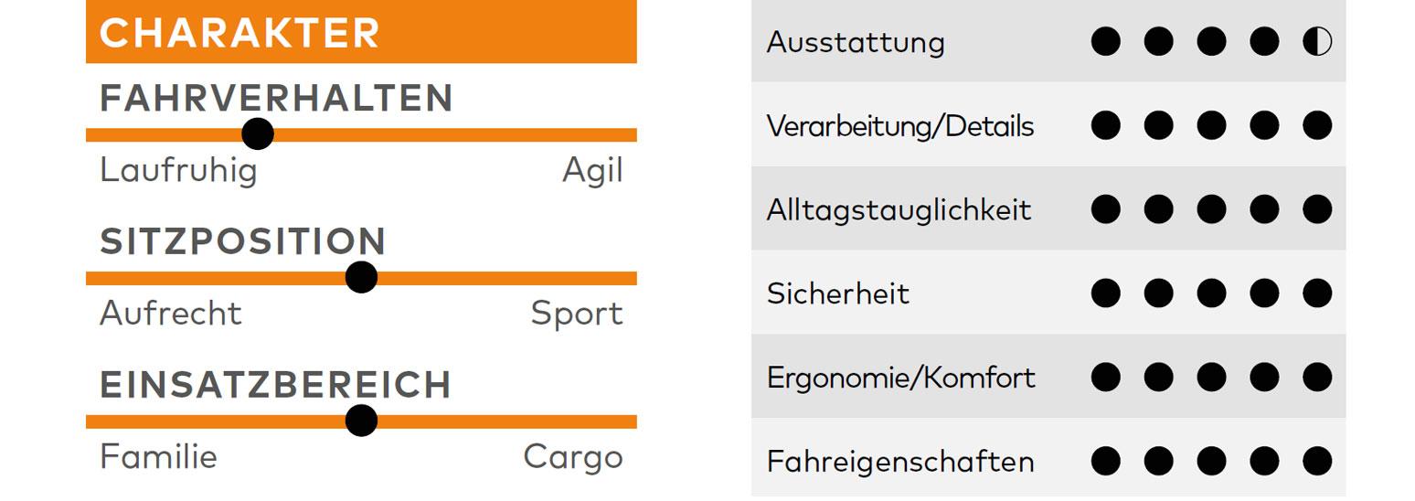 Riese & Müller Packster 70 Vario, Test, Familienrad, Lastenrad, E-Bike-Test, Kaufberatung