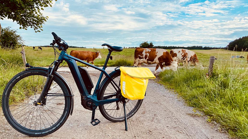 Canyon, Pathlite:ON 8.0, Radfahren, E-Bike, Elektrorad