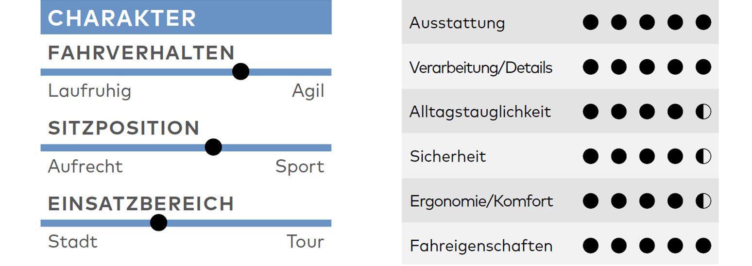 Schindelhauer Friedrich VIII, Test, Kaufberatung, Urbanbike